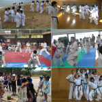 2017summer-karate-student