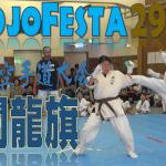 DojoFesta29-Towryuki