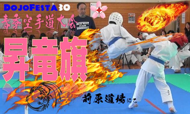 showryuki30poster1