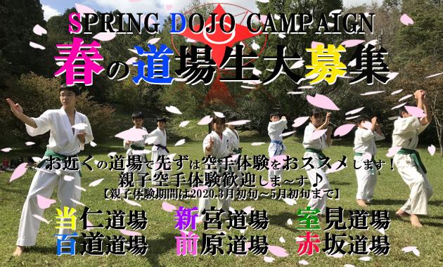 spring2020campaignmain