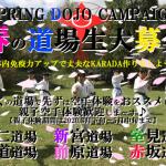 spring2020campaignmain2