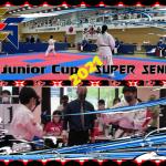 sjc2021-ssc2021.tournament.results